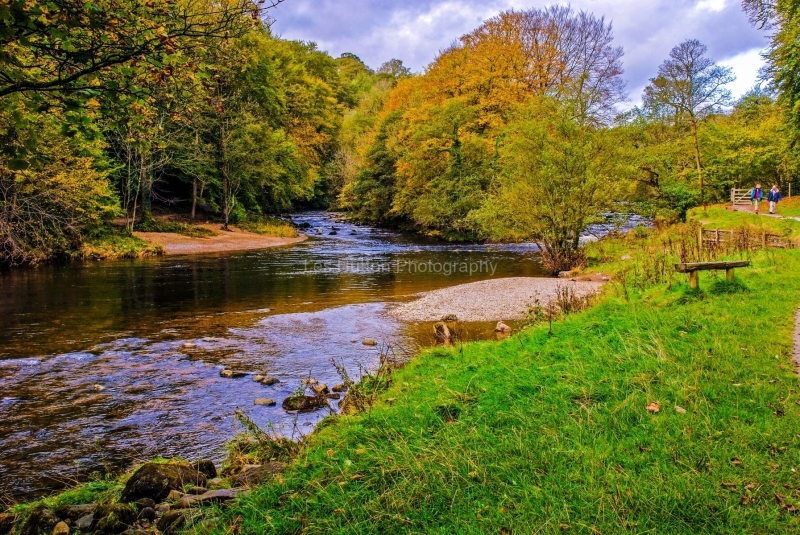 Bolton Abbey - River Wharfe