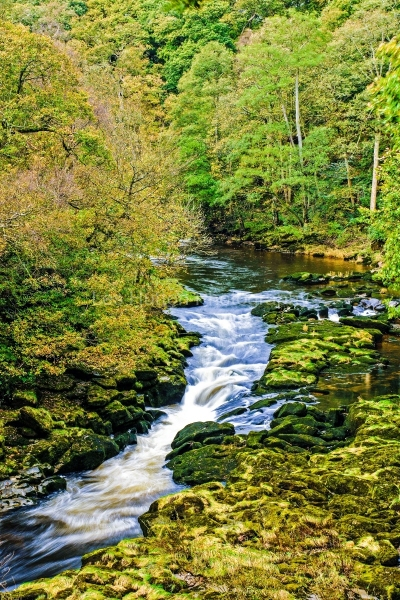 Bolton Abbey - Upper Strid