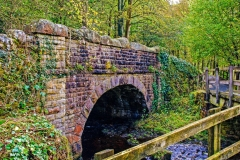 Bolton Abbey - Old Road Bridge