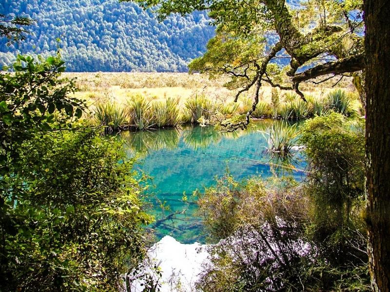 New-Zealand-2005-119