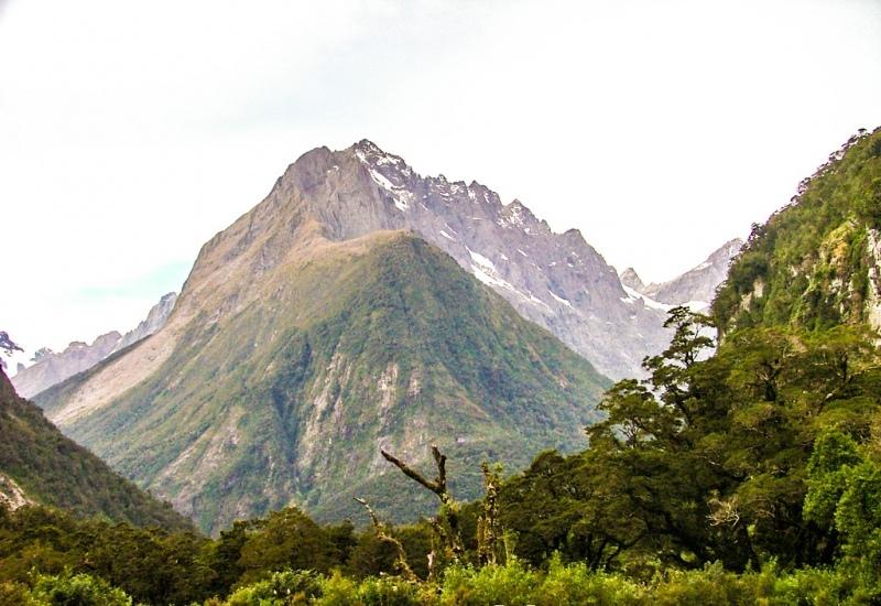 New-Zealand-2005-125