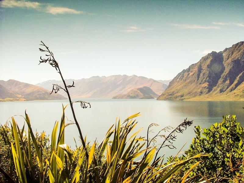New-Zealand-2005-158