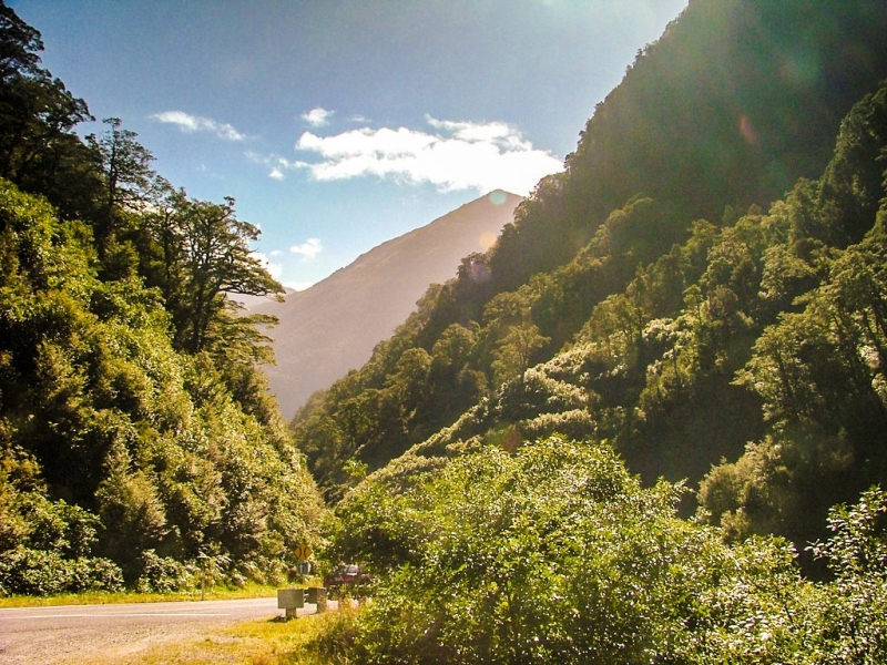 New-Zealand-2005-166