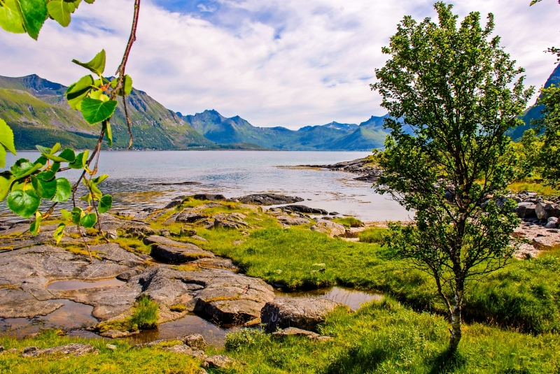 Fjord near Lesknes