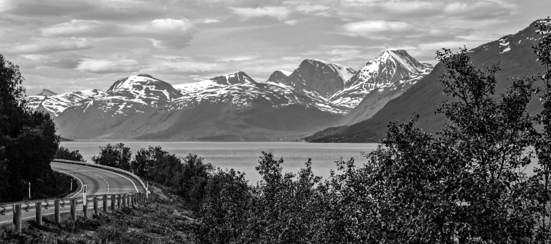 Lyngenfjord BW