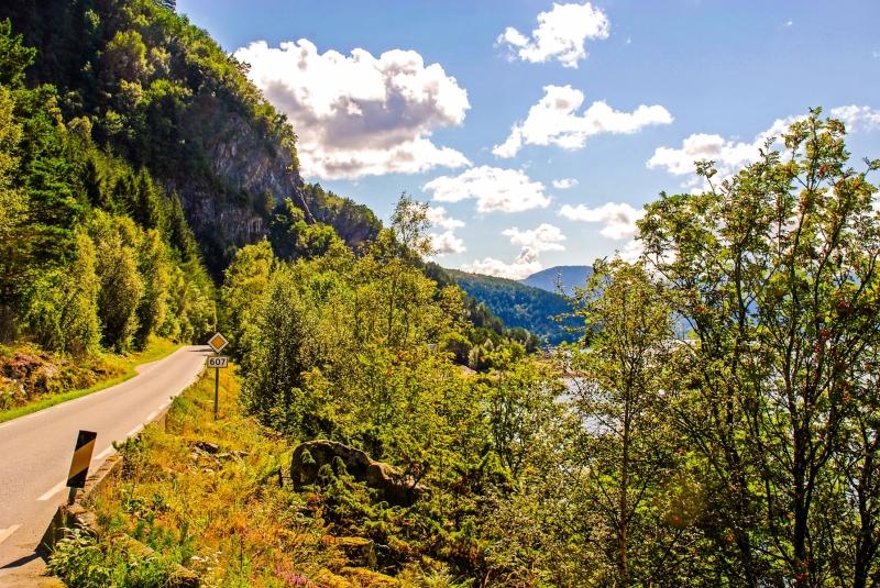 Sognefjord Shoreline