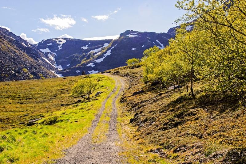 Ytre Svartvikka Track to the Hills