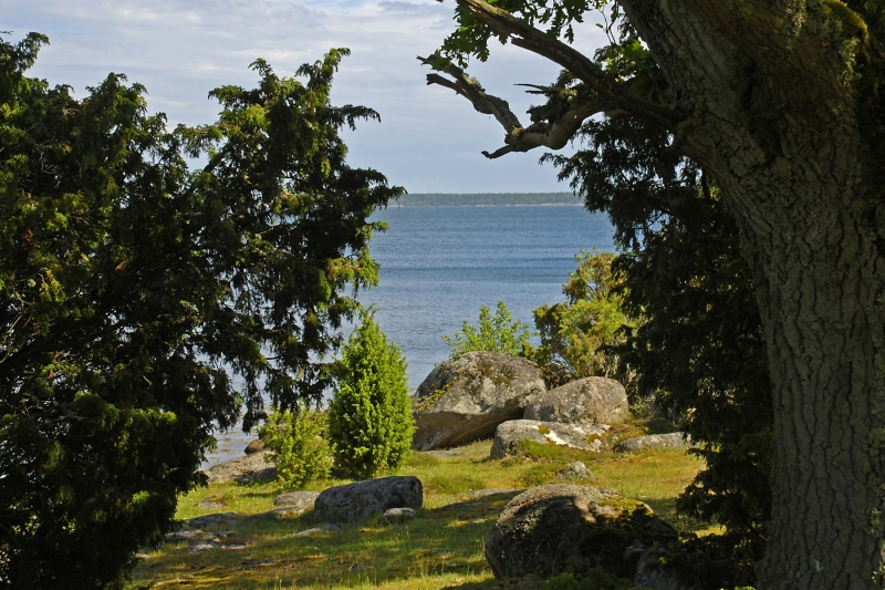 Kuggaboda-Nature-Reserve-Peep-Through
