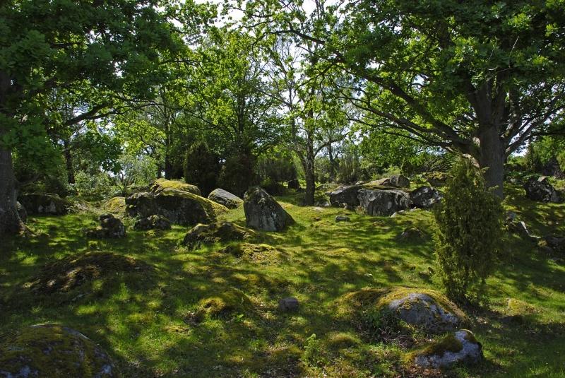 Kuggaboda-Nature-Reserve-Shady-Dell