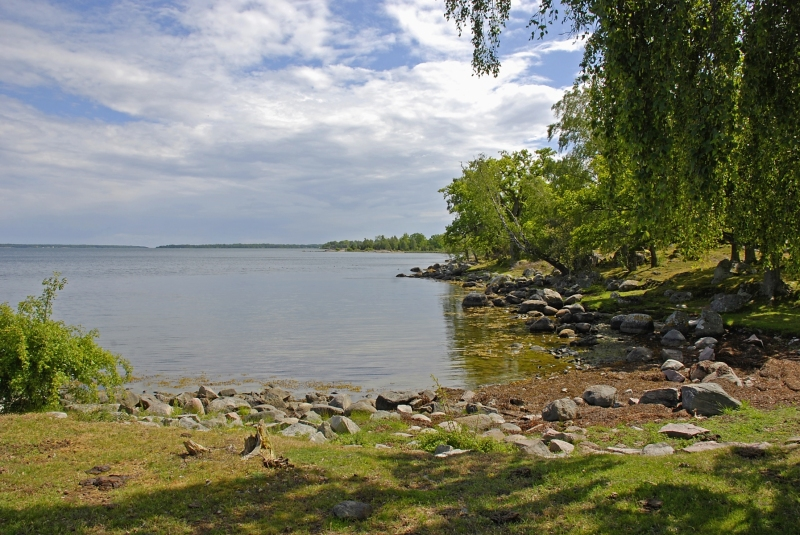 Kuggaboda-Nature-Reserve-Shoreline3