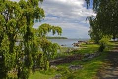 Kuggaboda-Nature-Reserve-Shoreline2