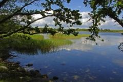 Kuggaboda-Nature-Reserve