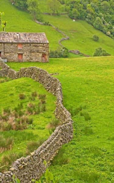 Swaledale Walls